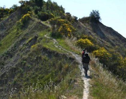 le nostre colline